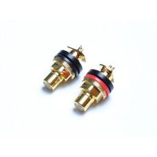 TTAF 93505 Gold