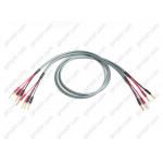 Atlas Ichor Bi-Wire 2.0 m