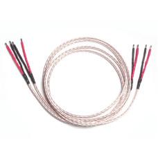 Kimber Kable 12TC