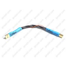 Curious EVOLVED USB Regen Link 200mm